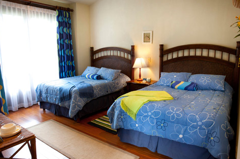 Luxury rental near Tamarindo