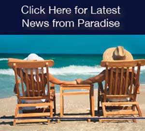 Click here for latest news from Paradise