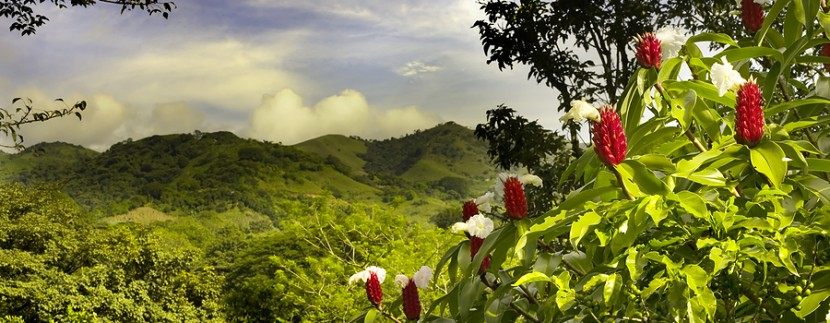 Costa Rica: Leading the Way In Environmental Conservation