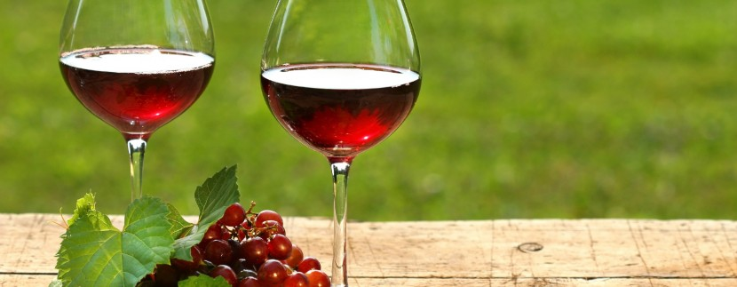 Wine Expo in Costa Rica: Expo Vino 2013