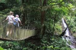 1-rainmaker-bridge