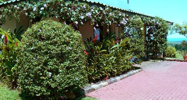 Costa-Rica-Real-Estate-6