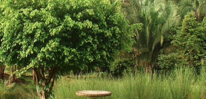 Home-in-Manuel-Antonio-Costa-Rica-5