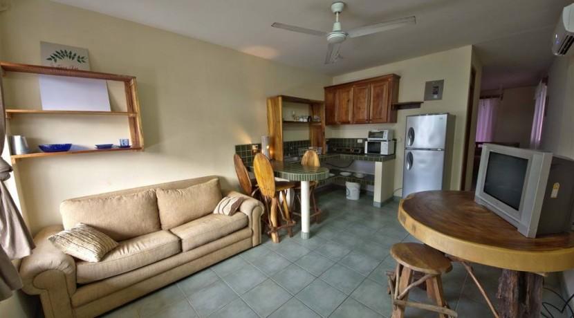 apt-living-room.jpg.1024x0