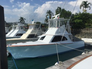 tres amigos sport fishing charter in los suenos