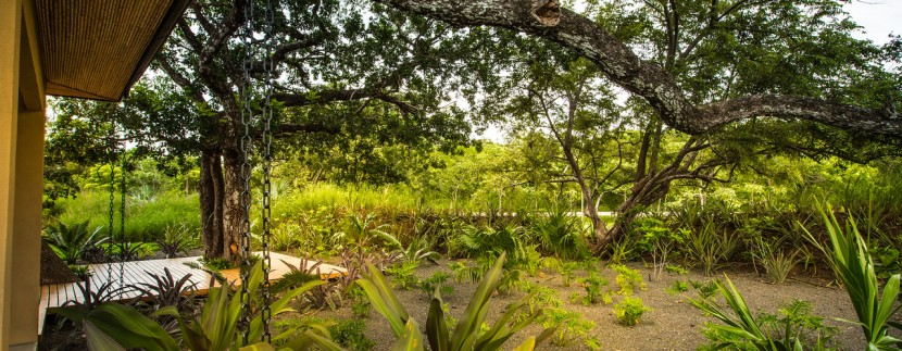 tropical gardens at home for sale in hp