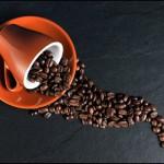 Costa Rican Grown Coffee Beans