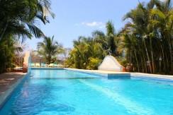 pool at playa flamingo property