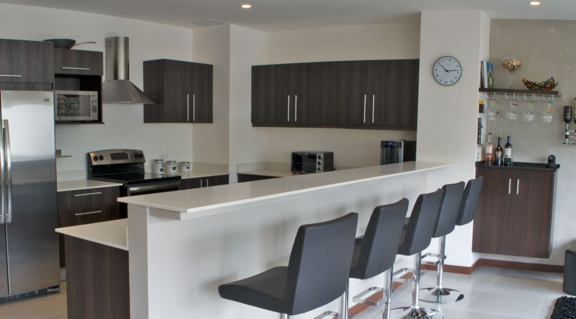 Amazing Condo Kitchen2
