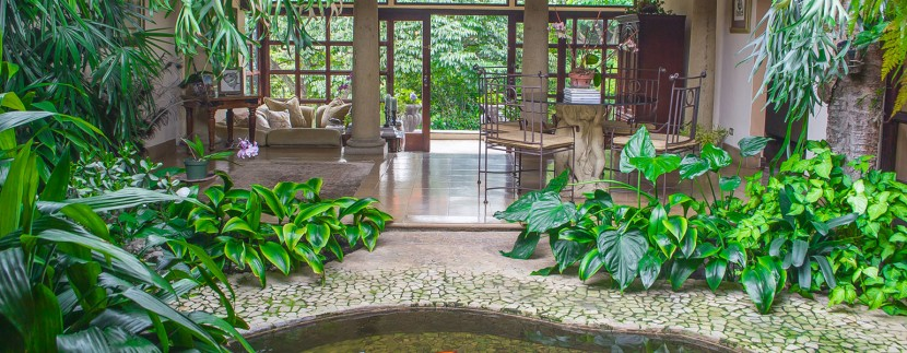 Lifetree House Inner Garden