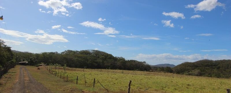 farm-land-in-tamarindo