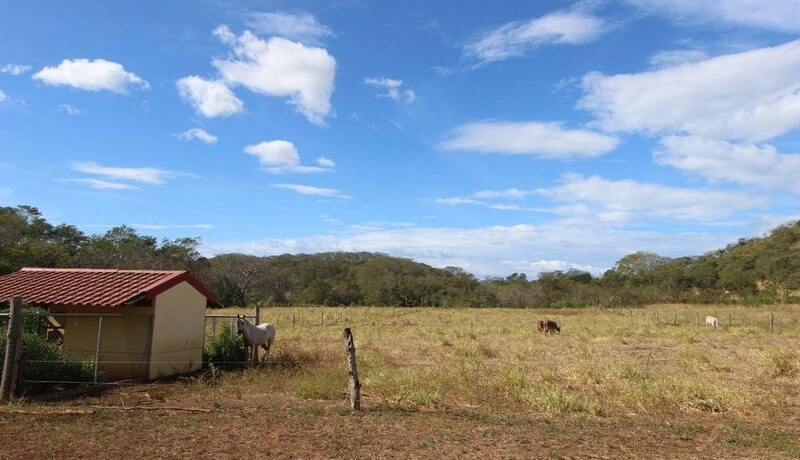 land-for-sale-in-tamarindo