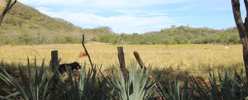 land-for-sale-in-tamarindo-costa-rica