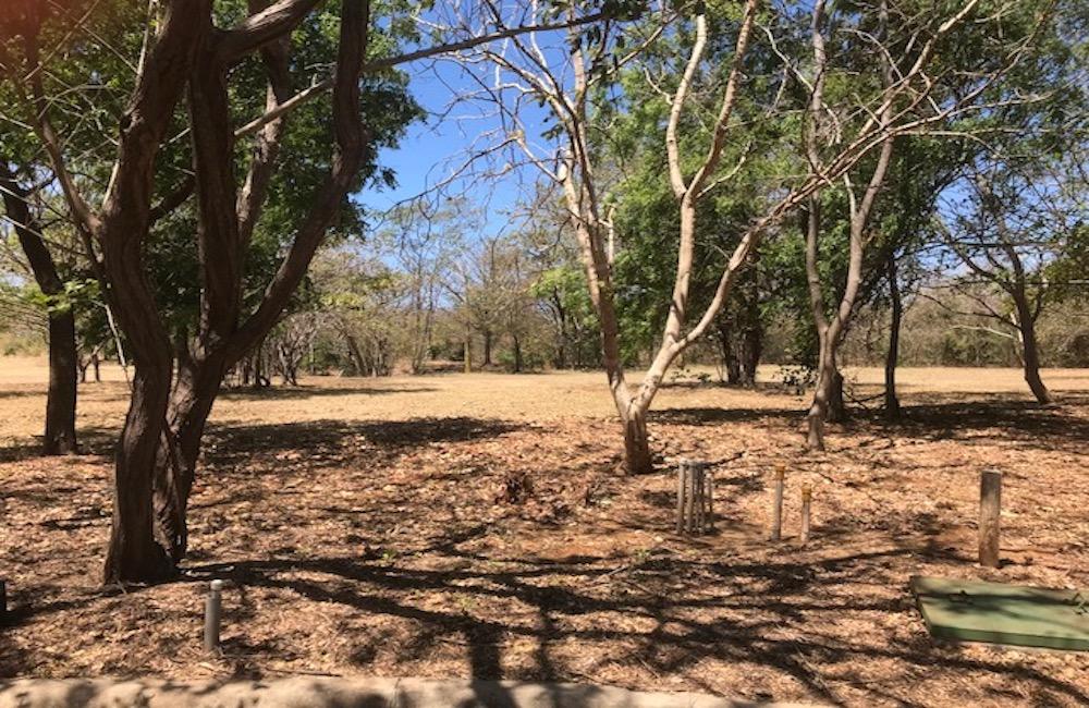 Golondrinas 16 – Playa Bonita