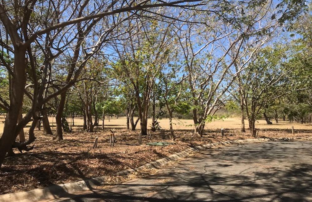 Golondrinas 15 – Hacienda Pinilla