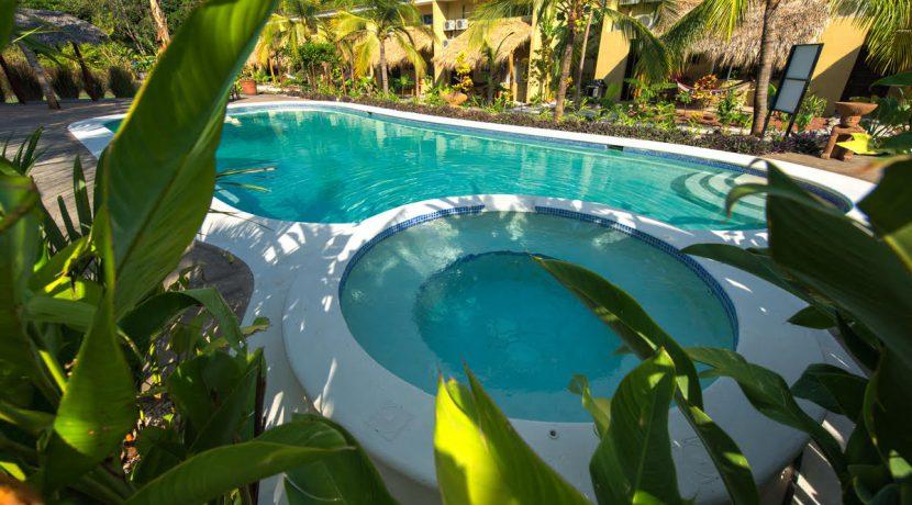 00_KRAIN_Cabo Velas 35_Garden View_Matapalo