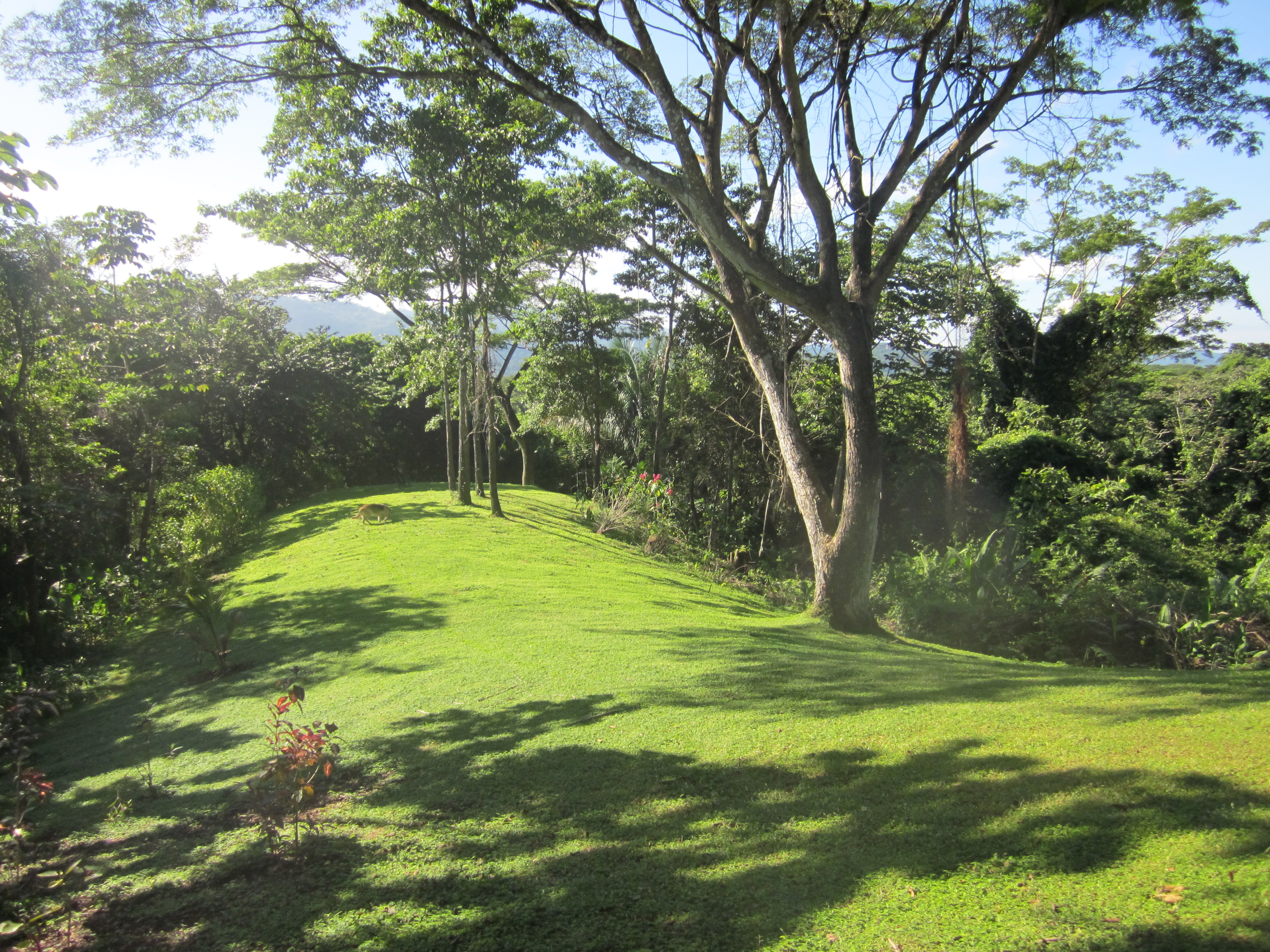 FIRESALE* 18 Acre Private Reserve with Home and Guesthouse. 1 hour from the airport and 20 minute to Los Suenos Resort