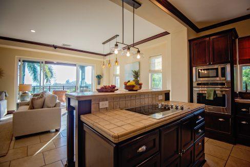 Kitchen_livingroomvb1a
